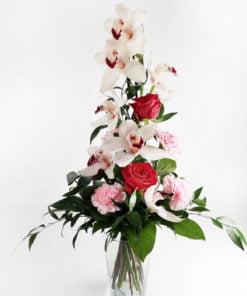 Korkea kimppu orkideasta